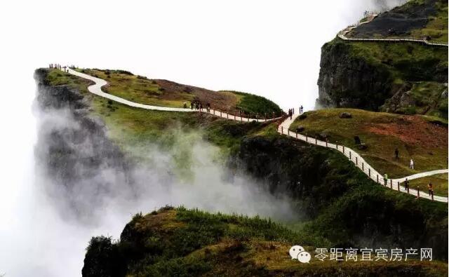 云南昭通市昭阳区的大山包,是黑颈鹤的越冬栖息地.